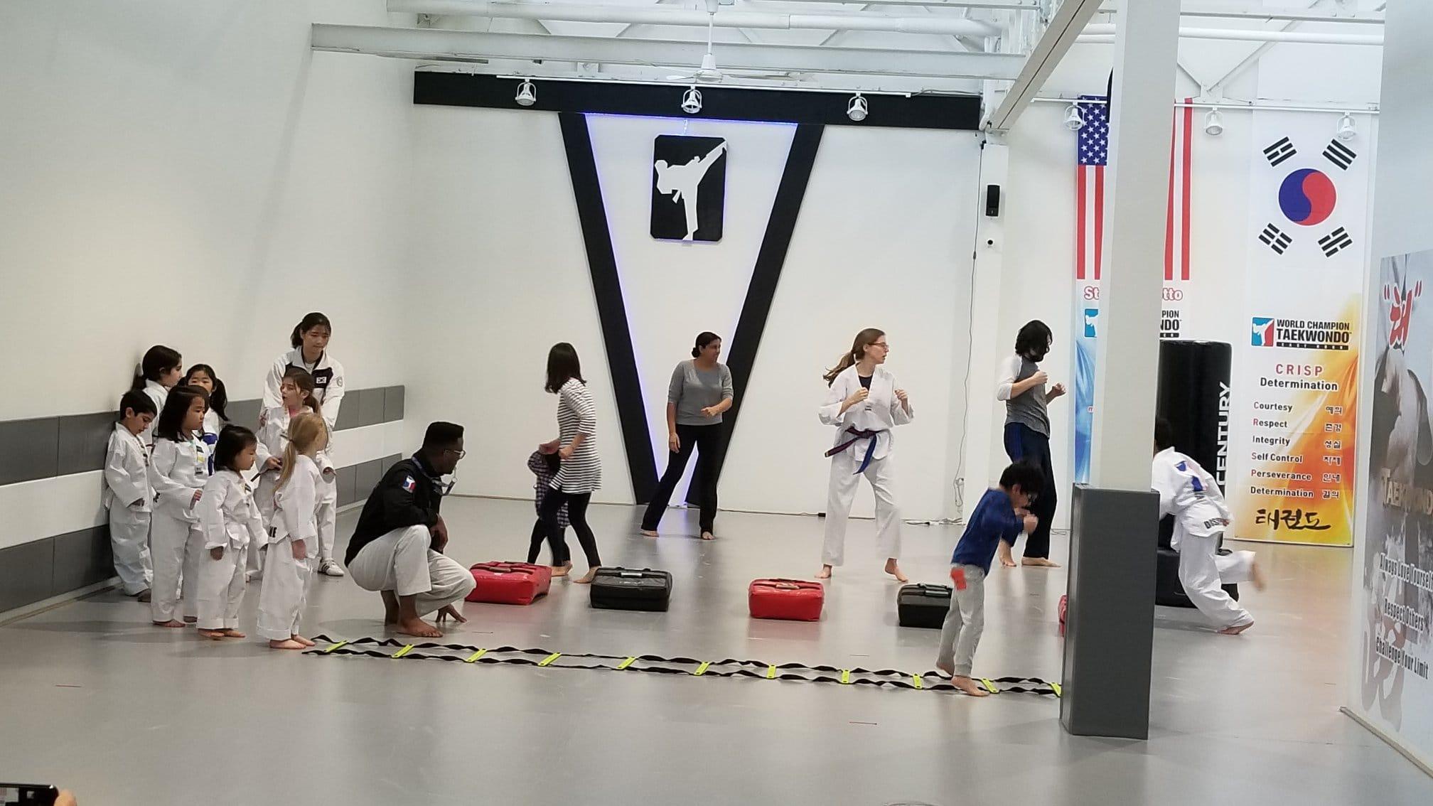 World Champion Taekwondo Gallery Photo Number 4